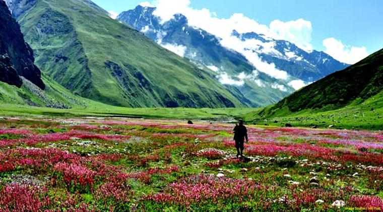 valley of flowers ajai alai awakening yatra 2020
